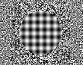 dati/coolpagelinks/optical illusions